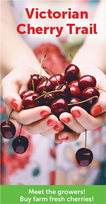 Cherry Brochure trailpg
